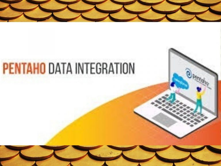 How To Hire Reasonably Priced Pentaho Developers?