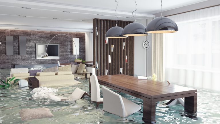 National Flood Insurance Program and Adjuster Certification
